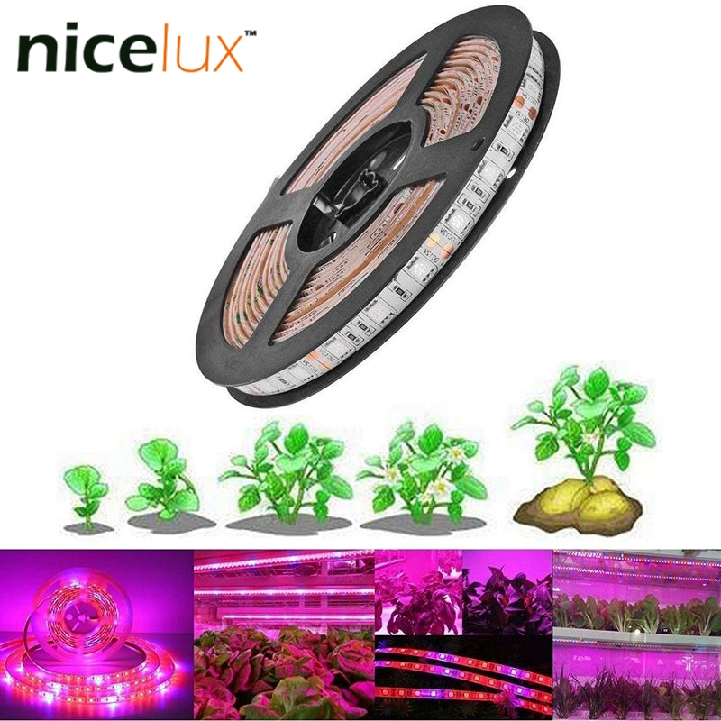 3/4/5meter LED Grow Light Full Spectrum Stript 5050 LED Flower Plant Phyto Growth Lamps For Greenhouse Hydroponic Plant Growing