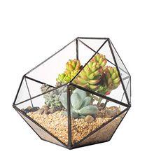 Glass Terrarium Storage Box Jewelry Holder,Glass Geometric Terrarium Tabletop Succulent Plant Box Planter Holder Case