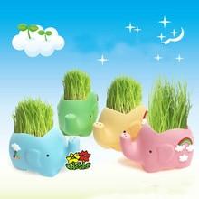 Plant Pot Plants Growing Grass Head Dolls Creative Desktop Green Planting Potted Mini-plant DIY Flower Planter Ceramic