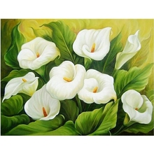 Diamond Embroidery Canvas DIY 5D Painting Flowers White Calla Lily Cross Stitch Rhinestones