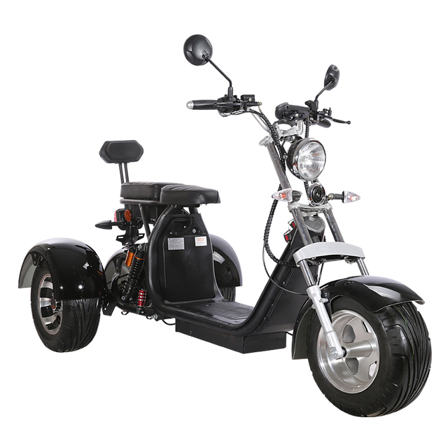 3 Wheel Citycoco Electric Motorcycle Electric Tricycles Adult Icluding EU Customs No Taxes 60V 20ah Removable Lithium Battery 2