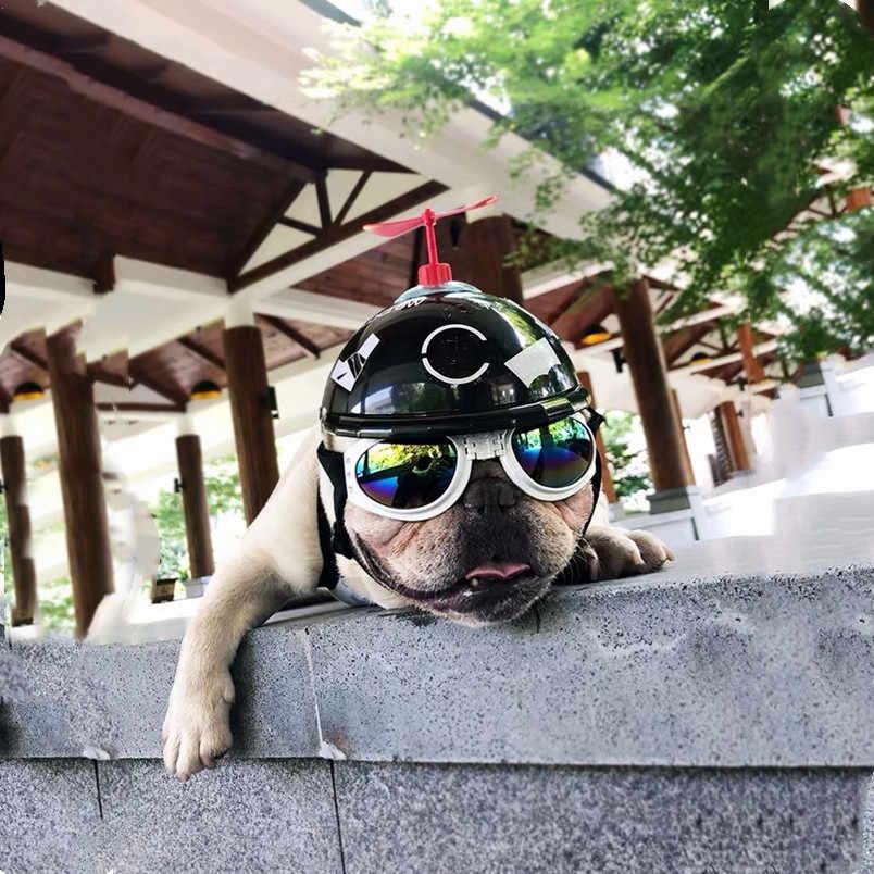 نظارات شمسية قابلة للطي للكلاب مضادة للرياح ومضادة للانتقاء متوفرة بـ 6 ألوان من منتجات كلاب الأليف LCD02