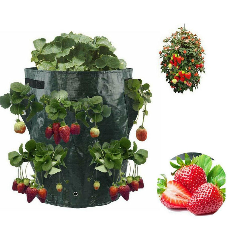 Planting Bag Plant Seedling Nursery Bags 10Gallon Planter Pockets Strawberry Seedling Growing Pots with Handle Home Garden Tool