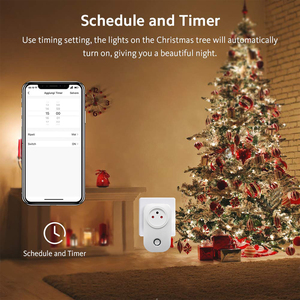 Image 3 - Israel  Wifi Socket 10A Smart Plug Works With Alexa Google Home ,Smart Life APP, Only Supports 2.4GHz Network