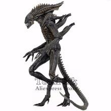 "Aliens 7 ""Defiance Xenomorph Warrior Action FigureจากDark Horse Defianceการ์ตูนKO S 2017 NECA Alien Series 11ของเล่นตุ๊กตา"