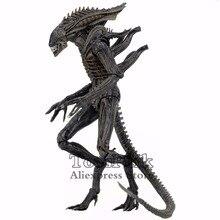 "Aliens 7 ""Defiance Xenomorph wojownik figurka z ciemnego konia Defiance komiks KO 2017 NECA Alien Series 11 zabawki lalki"