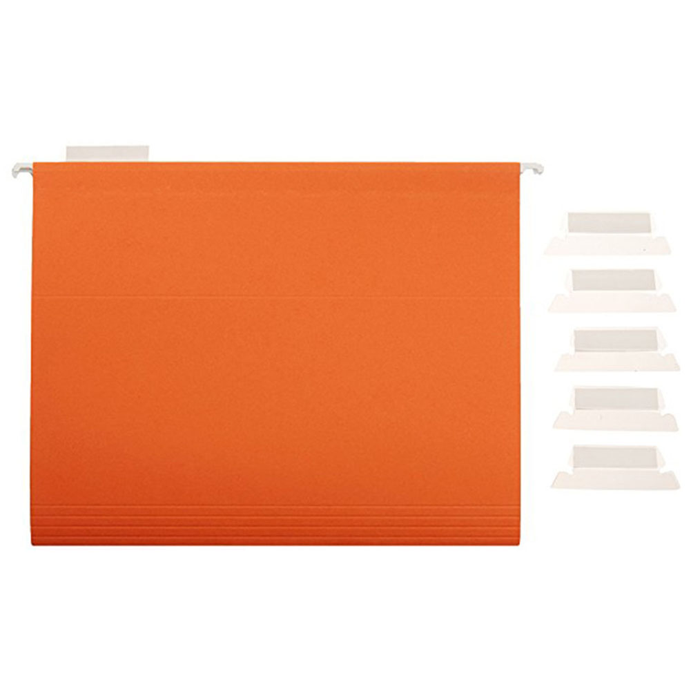 100Pcs File Index Durable Professional Label Convenient Hanging Crafts Film PVC Bendable Smooth Office Transparent