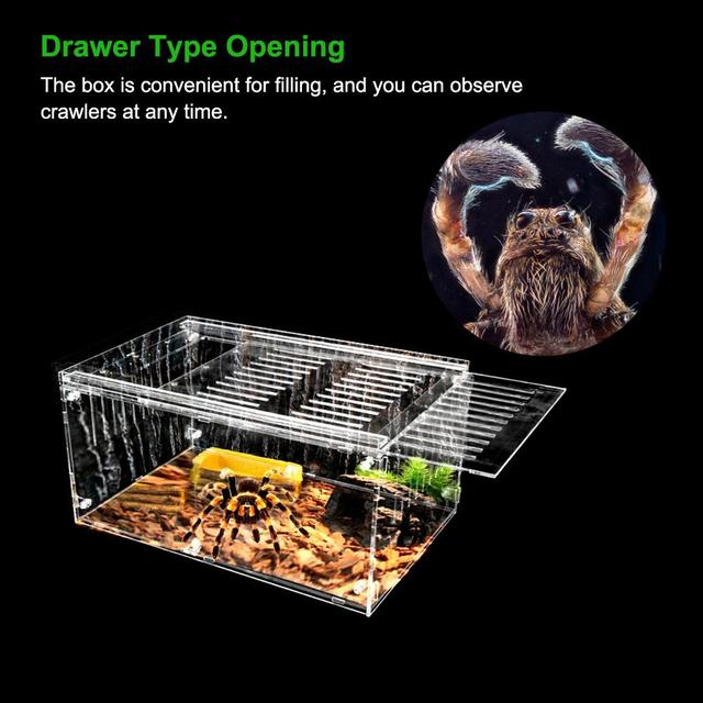 Reptile Breeding Box For Spiders - Lizards - Frogs - Crickets - Turtles 4