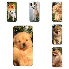 TPU Case Shibainu Dog For Xiaomi Mi Mix Max Note 2 2S 3 5X 6 6X 8 9 9T SE A1 A2 A3 CC9e Lite Play Pro F1(China)