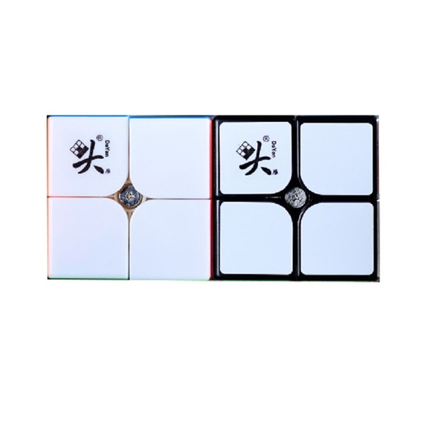 Dayan TengYun 2x2 M 2x2x2 Magnetic Magic Cubing Speed 2x2 cubo magico Educational Toys Gift Game Kids