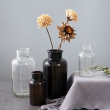 Flower Vases Decoration Glass Transparent Hydroponic Plant Desktop for Dried
