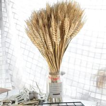 100Pcs/lot DIY Craft Natural Wheat Ears Dried Flowers Real Grain Bouquet for Wedding Party Decoration Scrapbook Home Decor