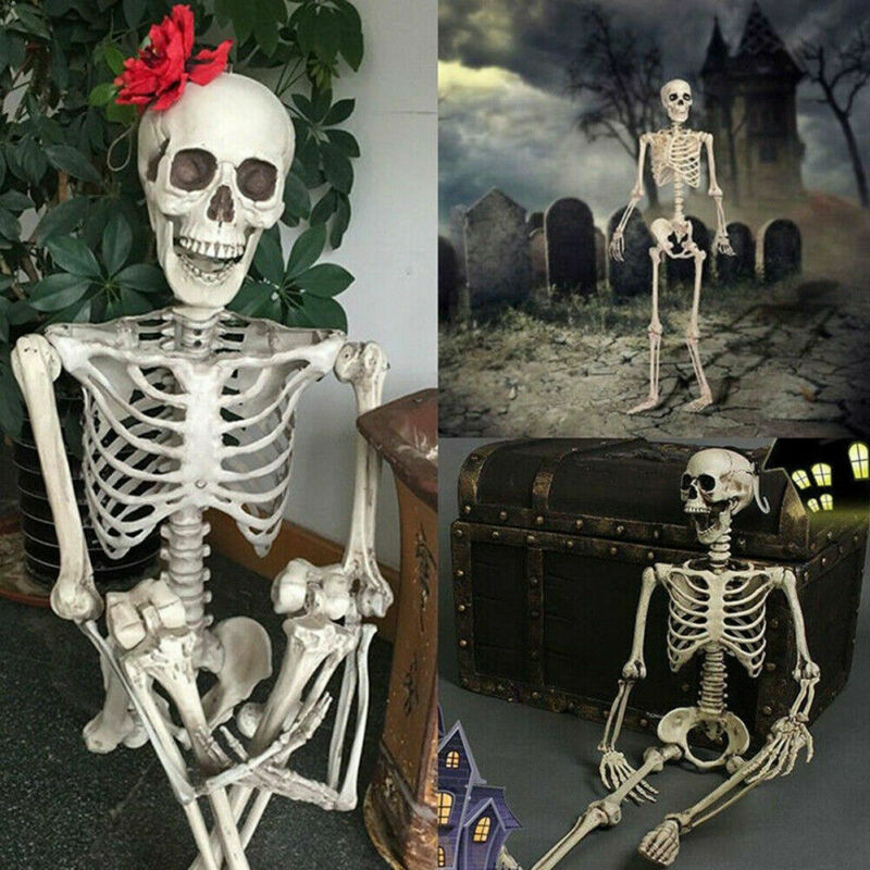 UK Poseable Full Life Size Human Skeleton Halloween Decoration Party Prop New