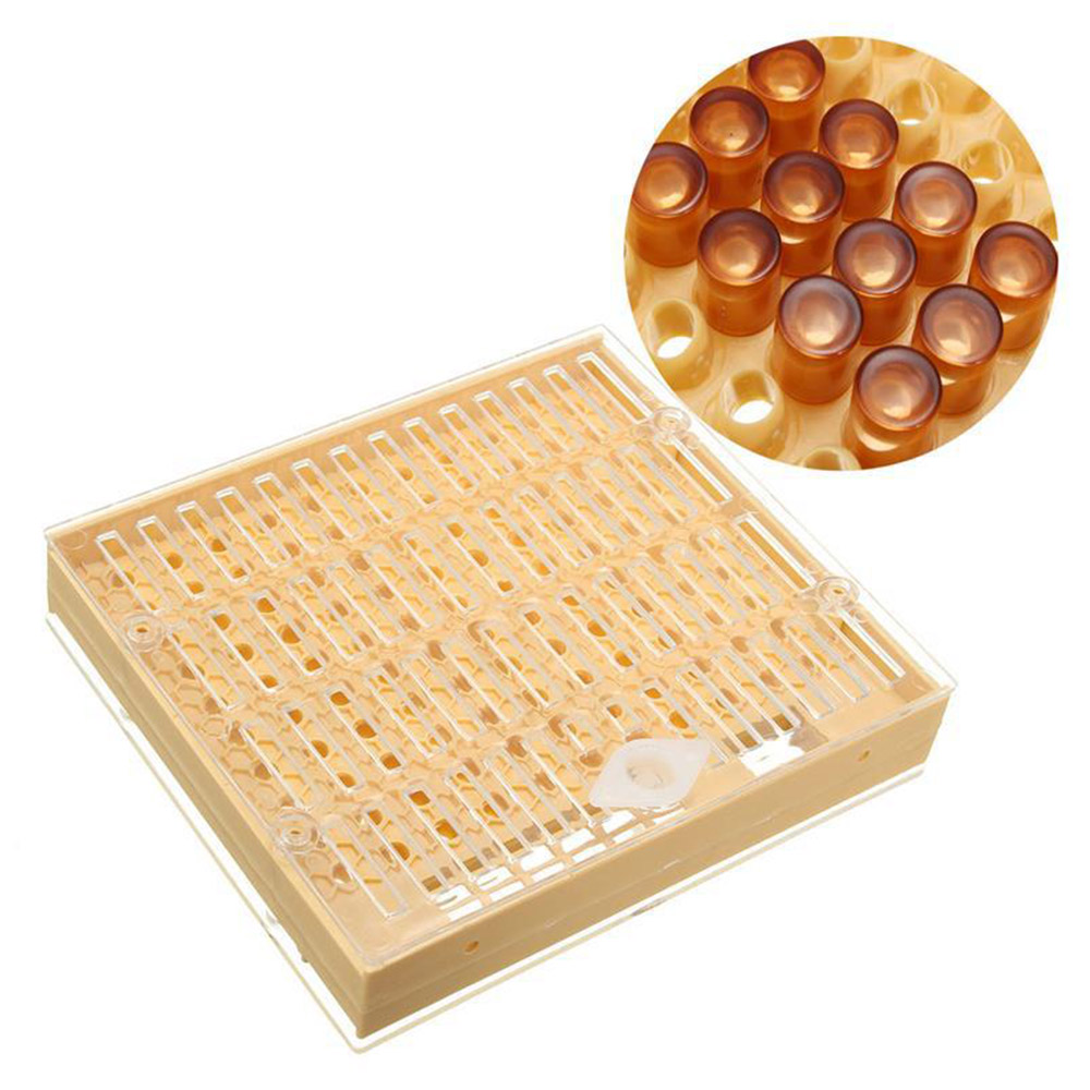 Hot Selling Beekeeping Tools Equipment Set Queen Cultivating Box Plastic Bee Cups Cage Beekeeping Tool Kit