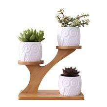 2 Styles en céramique plantes succulentes Pots jardinière pour plantes bonsaï Pot bambou plantes support ensembles