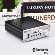 مضخم صوت ستيريو مزود بتقنية البلوتوث 5.0 HIFI TPA3116 بقدرة 50 واط + 50 واط + 100 واط 2.1 قناة مضخم صوت Amplfiier جهير وأمبير لوحة TF USB FM مسرح منزلي للسيارة