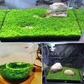 Aquarium Grass Seeds Fish Tank Indoor Aquatic Water Plants Decor Rock Lawn Garden Foreground Planting Landscape Ornament|Artificial Plants| |  -