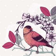 Azsg птица цветок Бабочка прозрачные штампы для diy Скрапбукинг