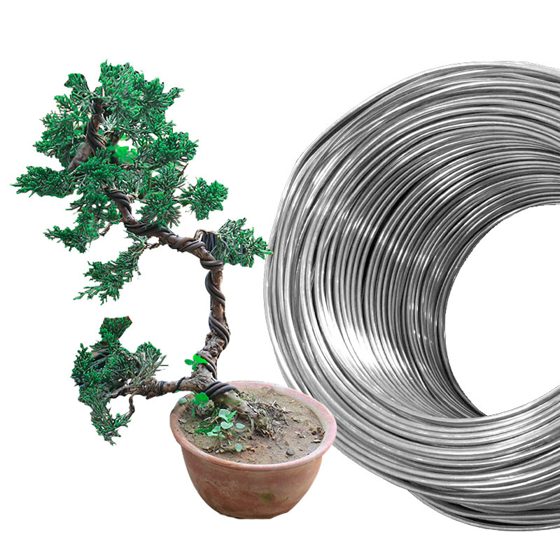 Bonsai Wires Aluminum Bonsai Training Wire Multi Size 2 3 4 5 6 Mm Black White