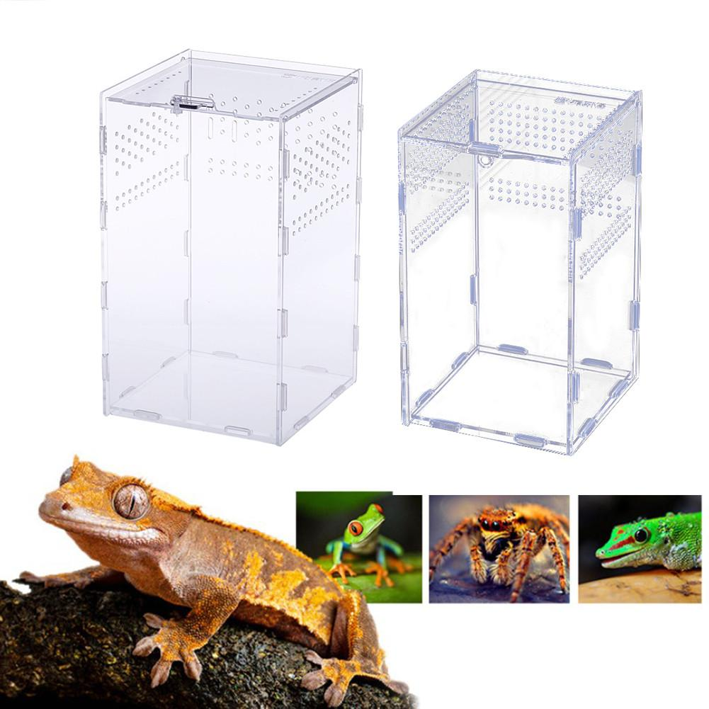 Transparent Acrylic Reptile Feeding Box Insect Box Praying Lizard Reptile Home Insect Cage Reptile Terrarium Spider Breeding Box