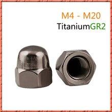 5 20 шт/лот din1587 чистый титан колпачок гайка m4/m5/m6/m8/m10/m12/m16/m20
