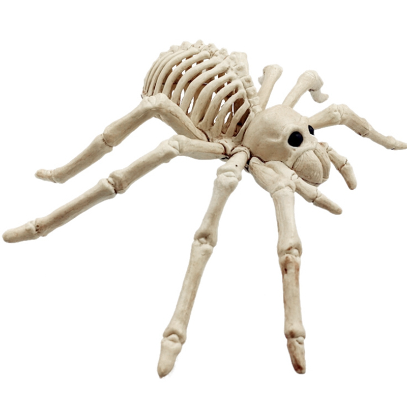 Halloween Skeleton Tool Holiday Party Accessories Room Escape Holiday Tricky Gadget Terror Plastic Halloween Skeleton New Qgnv