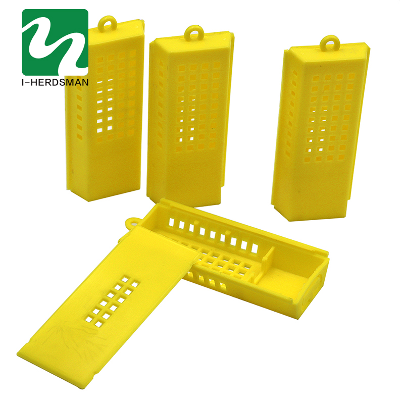 50 PCS BeeTransport Cages Beekeeping Bee Queen Rearing Cage Cell Plastic Post Mail New King Transparent Yellow Supplies Equipmen