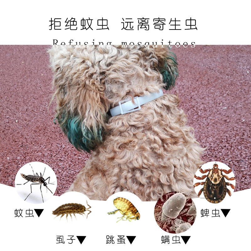 Dog Flea Neck Ring Cat To Lice Parasites Collar Pet Supplies New Products Hot Sales