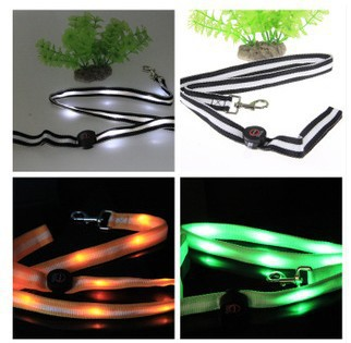 Circle Concentration LED Shining Dog Traction Rope Shining Dog Dog Chain Pet Supplies Rope