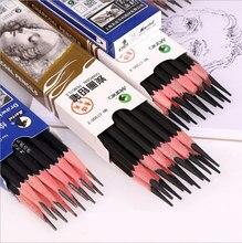 Marie crayon à charbon de bois seulement pour ensemble d'outils de dessin d'art artiste de croquis débutant 2H,HB,B,2B,3B, 4b, 5B,6B,7B,8B