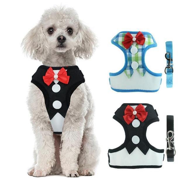 Elegante Cat Dog Vest Harness com Leash Ajustável Bowtie Terno Gatinho Filhote de Cachorro Filhote de Cachorro Gato Colete Arnês Coleira para Gatos