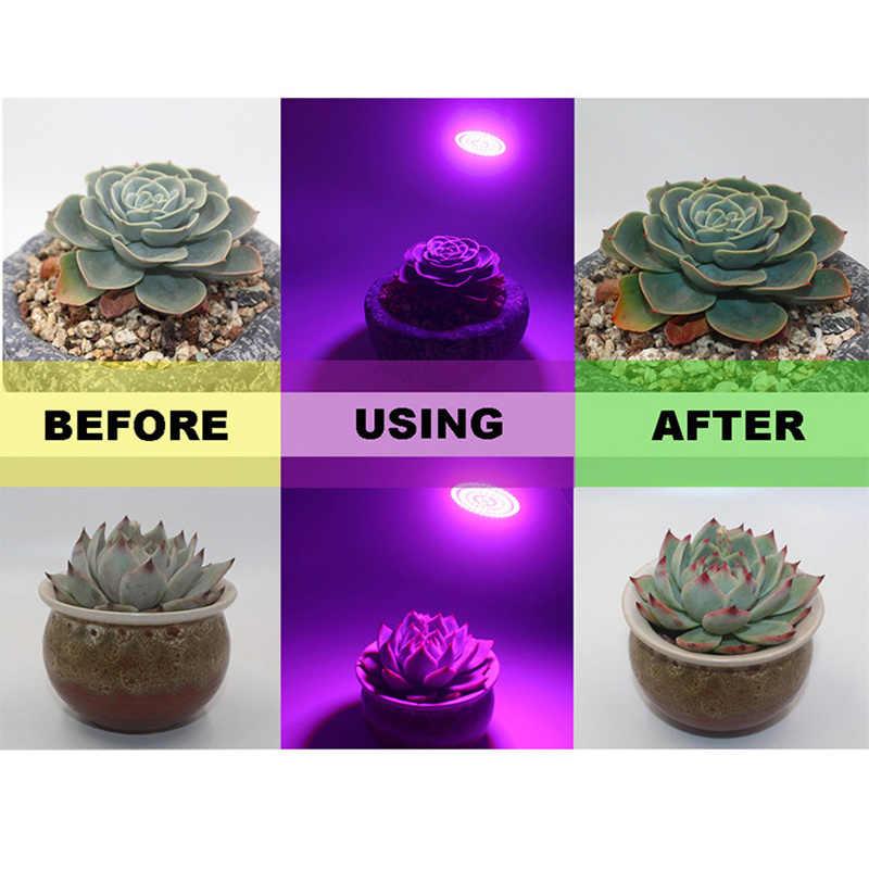 1 unidad de espectro completo E27 220V LED planta de crecimiento bombilla de luz lámpara de Fito para plantas de jardín de interior hidropónica de flores carpa de caja