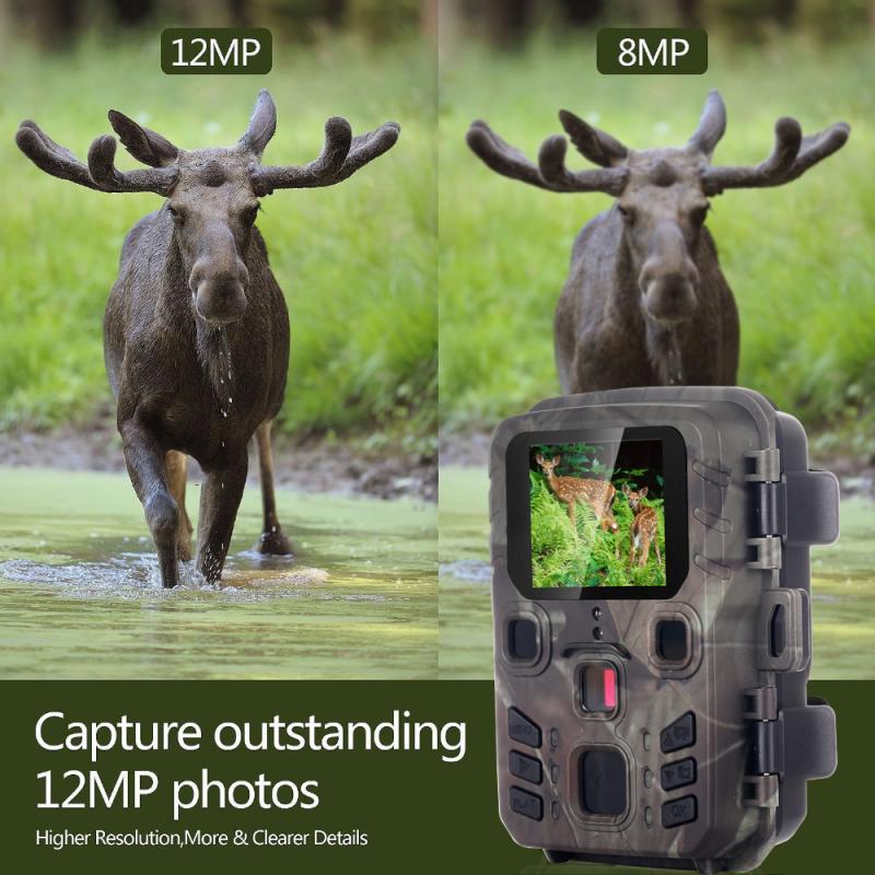 Display lcd 12mp 1080 p hd trail