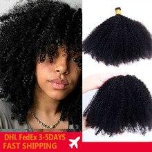 Afro Kinky Curly Human Hair 4B 4C I Tip Hair Extensions For Black Women I Tip Microlinks Mongolian Human Virgin Hair Prosa Hair