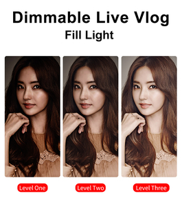 Image 2 - Светодиодная заряжаемая лампа для фото и видео съемки для Камеры Видеокамеры DSLR на Свадьбе