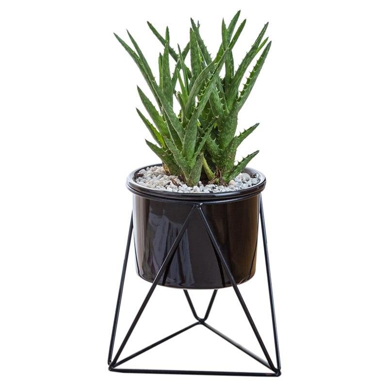 Planter Pots Indoor 6 Inch Modern Garden Ceramic Round Bowl With