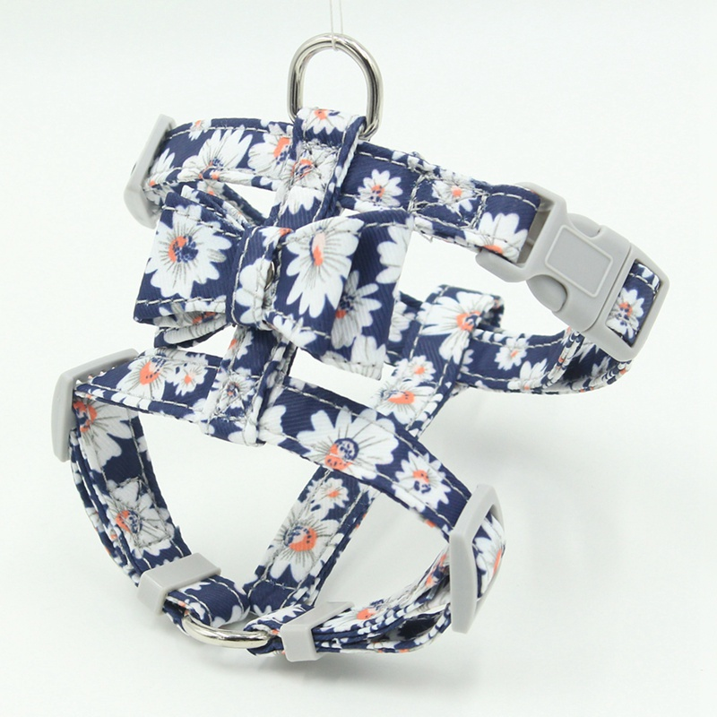 cute harness for girl dogs