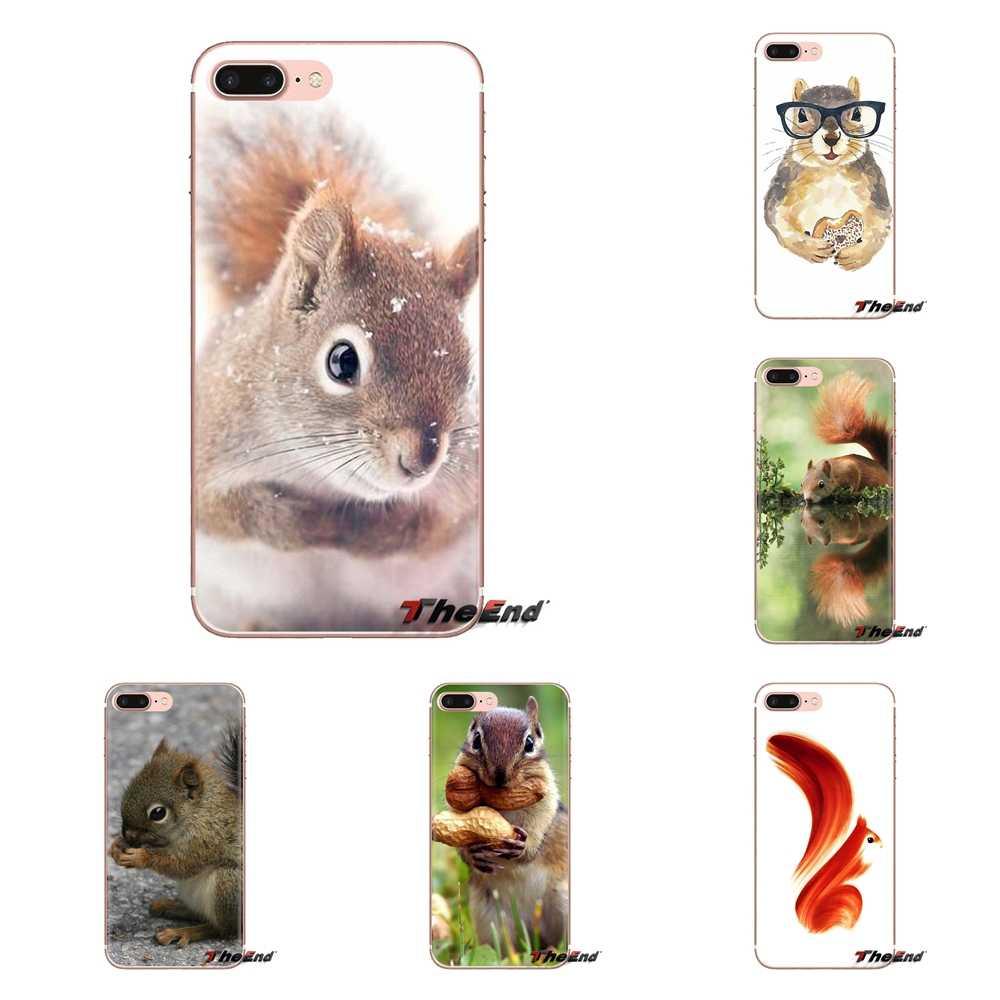 Coque souple transparente couvre pour iPod Touch Apple iPhone 4 4S 5 5S SE 5C 6 6S 7 8 X XR XS Plus MAX écureuil