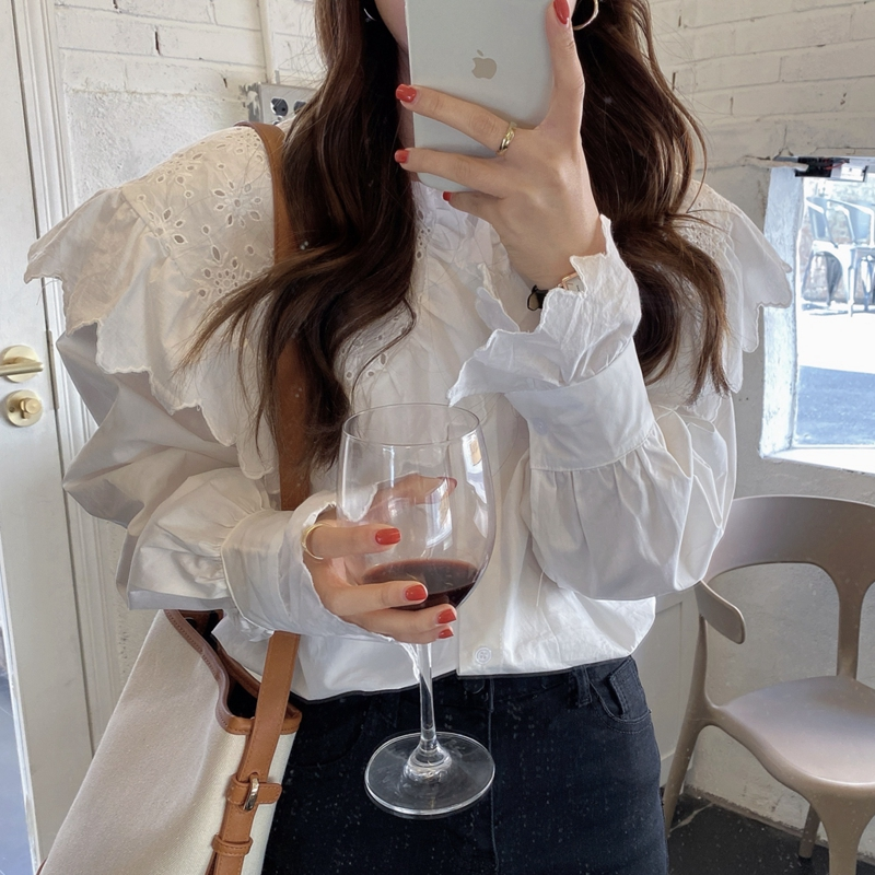 H8934058995124f38baac9e7364dcfe06Q - Spring / Autumn Hollow Out Big Lapel Collar Puff Sleeves Loose Solid Blouse