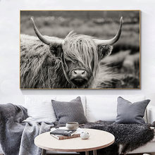 Картины на холсте highland с изображением якоря шотландского