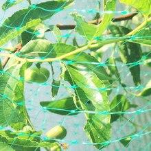 Jardim cerca planta anti-pássaro rede de proteção de jardinagem