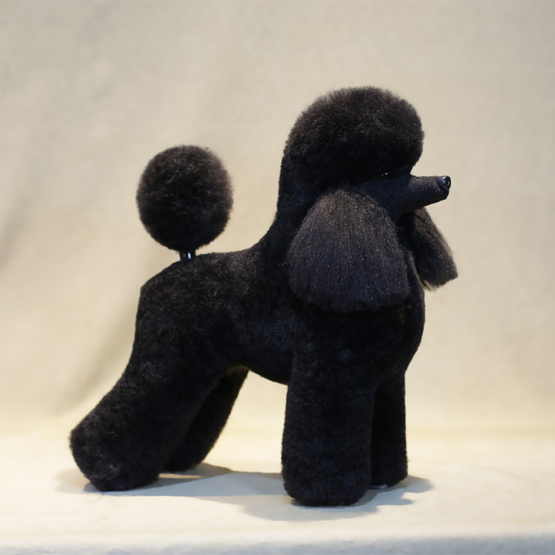Grooming Model Dog  Poodle Clip Set  Poodle Model Dog With Lamb Wig Or  Continental Clip