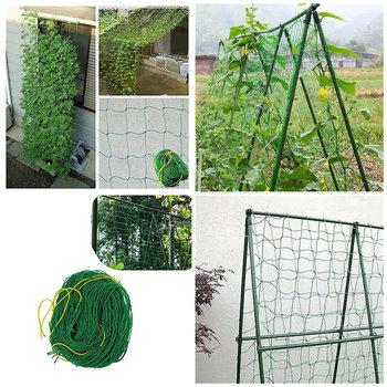 Wspinaczka siatki roślin fasoli rosną ogrodzenia zielona nylonowa siatka ogrodowa siatki wsparcie 1 8X0 9M 1 8 #215 1 8M tanie i dobre opinie CN (pochodzenie)