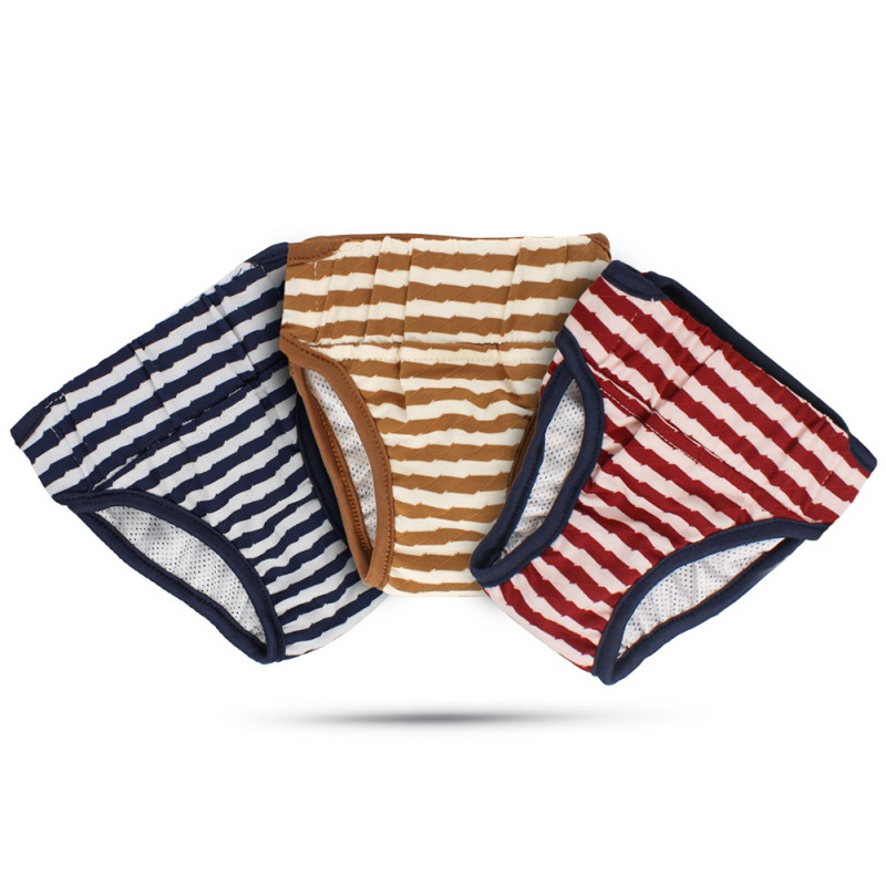 Pet Dog Pants Health Physiology Pets Menstrual Physiological And Sanitary Pants Safety For Chihuahua French Bulldog Pants 2021
