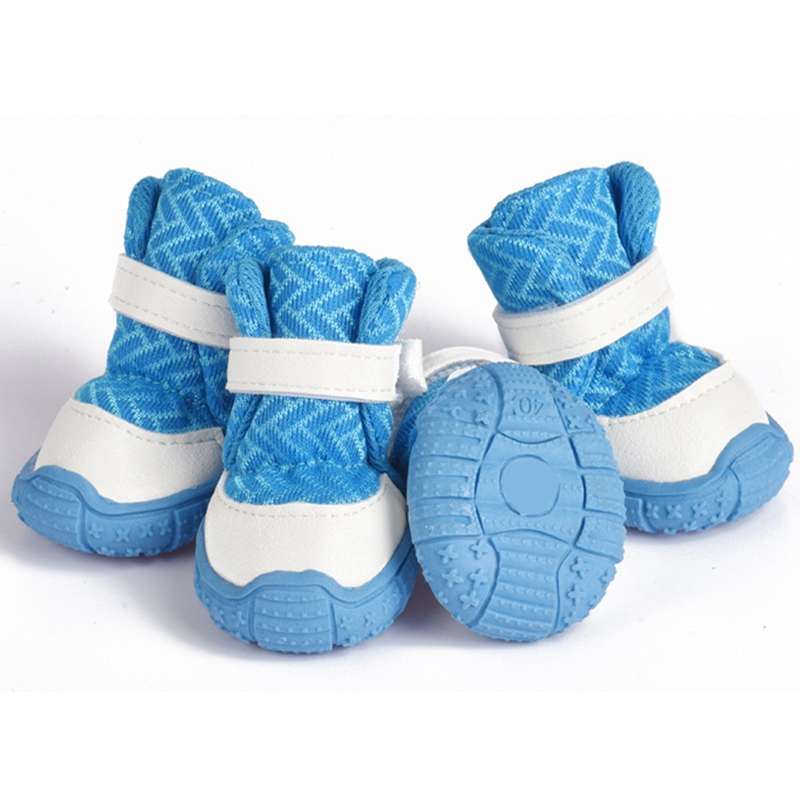 blue dog water shoes