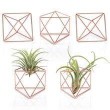 5 pcs air plant holder mini metal tabletop decor modern geometric