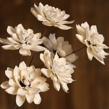 1pcs Real Dried Flower White Snow Lotus Dry Branch Blossom Wedding Home Decoration DIY Handmade Floral Arrangement Party Decor