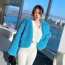 Fur Coat Faux Fur Coat Teddy Jacket Winter Coat Women Plush Blouse Female Coat Winter Mink Fur Fashion Women Jacket Solid Slim