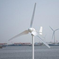 R & X 1000 واط مولد تربيني الرياح مع جهاز التحكم في الشحن 3/5 قطعة شفرات منخفضة الرياح بدء مولد طاقة الرياح