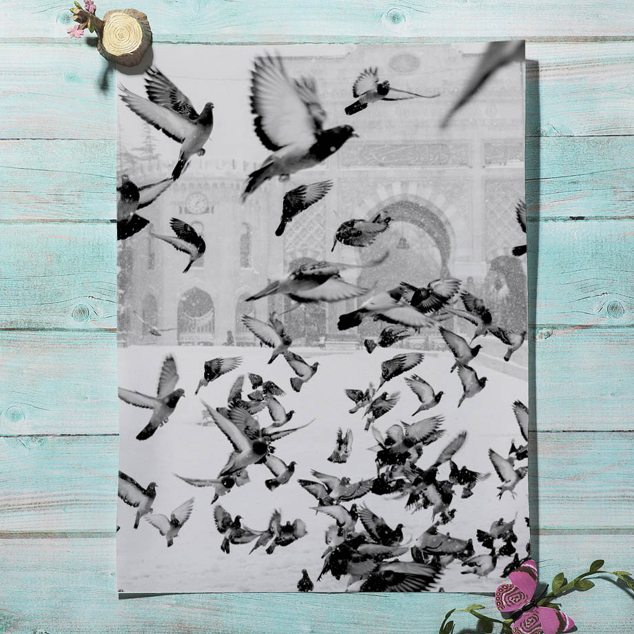 Black White Forest Zebra Pigeon Abstract Wall Art Print Canvas Painting Nordic Posters And Prints Wall Pictures For Living Room in Painting Calligraphy from Home Garden